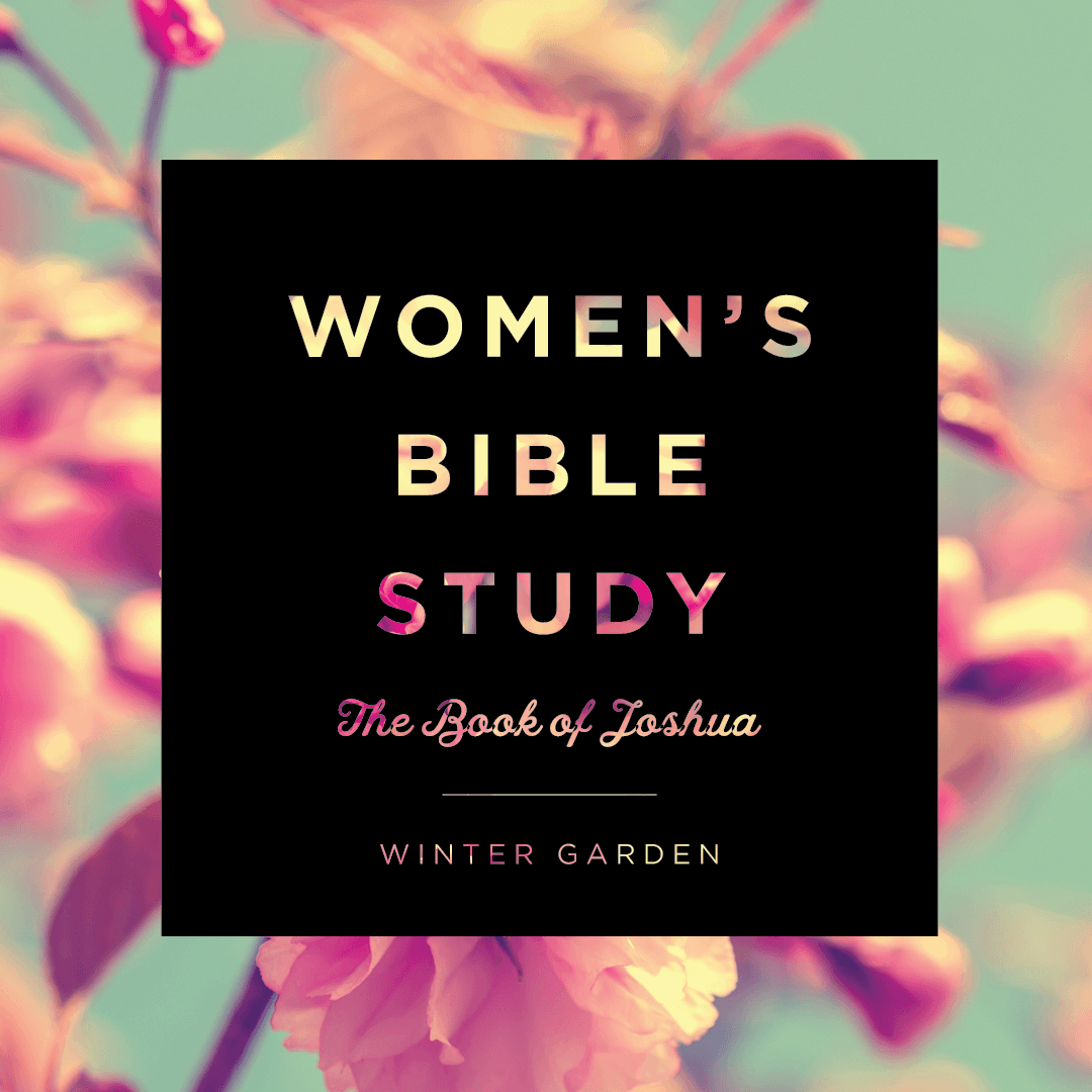 winter garden women u0027s bible study joshua grace church